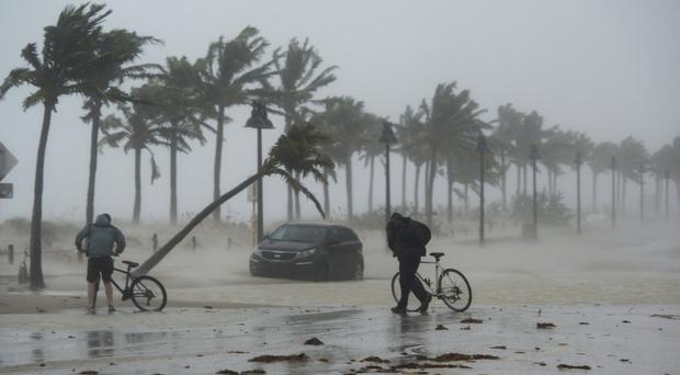 Cyclists are caught along the Fort Lauderdale waterfront (The Canadian Press/AP)