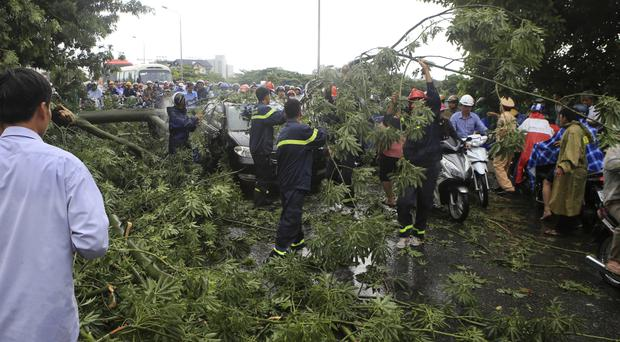 Workers remove fallen trees on a street in the central city of Hue, Vietnam (Ho Cau/Vietnam News Agency via AP)