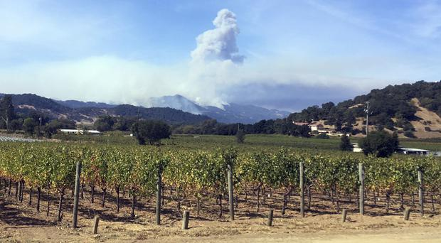 Smoke continues to billow in the hills behind Napa, California (AP)