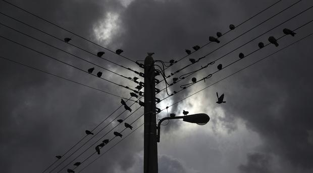 Pigeons perched on electric wires as clouds cover the sky in central Athens (Petros Giannakouris/AP/PA)
