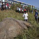 A passenger train hit two elephants in India (AP)