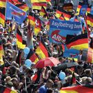 Supporters of German AfD wave flags (Michael Sohn/AP)