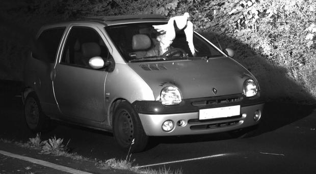A speed camera picture provided by police in Viersen, Germany, shows a pigeon in front of the windscreen of a car (Kreispolizeibehoerde Viersen via AP)