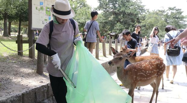A volunteer picks up plastic products during a clean-up campaign at a park in Nara, western Japan (Kyodo News via AP)