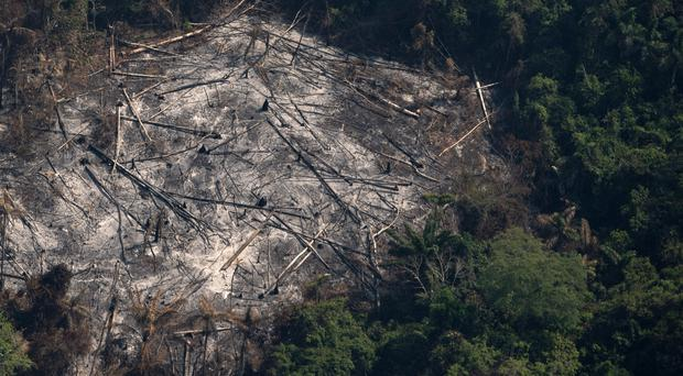 An area left scorched by fires is seen in the Menkragnoti indigenous reserve of the Kayapo indigenous group of Amazon rainforest in Altamira, Para state, Brazil (Leo Correa/AP)