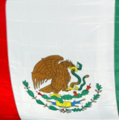 The Mexican government announced it will put undercover police aboard some buses and conduct weapons searches to prevent further killings
