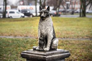 The statue is meant as a tribute both to Zorik and his animal companions, and to all strays (Raul Mee/AP)