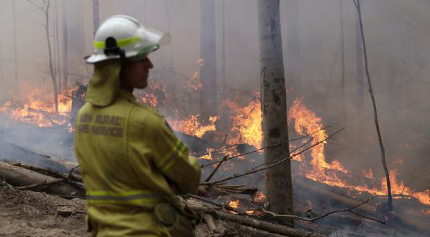 A firefighter keeps an eye on a controlled fire as they work at building a containment line at a wildfire near Bodalla, Australia (Rick Rycroft/AP)