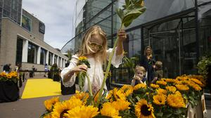 Visitors leaving the reopened Van Gogh were offered a free sunflower in Amsterdam (Peter Dejong/AP)