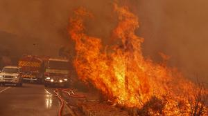 Firefighters battle a blaze near the town of Hout Bay, South Africa (AP)