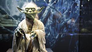 The image of Yoda appeared in the textbook in error