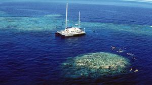 Tourists snorkel around Upolu Cay on the Great Barrier Reef near Cairns off the Australian north east coast (Brian Casey/AP)