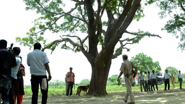 Police near the tree where two teenage girls were found hanging after they were gang raped in Katra village in the northern Indian state of Uttar Pradesh in May (AP)