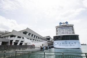 The Quantum of the Seas cruise ship is docked at the Marina Bay Cruise Centre in Singapore (Danial Hakim/AP)