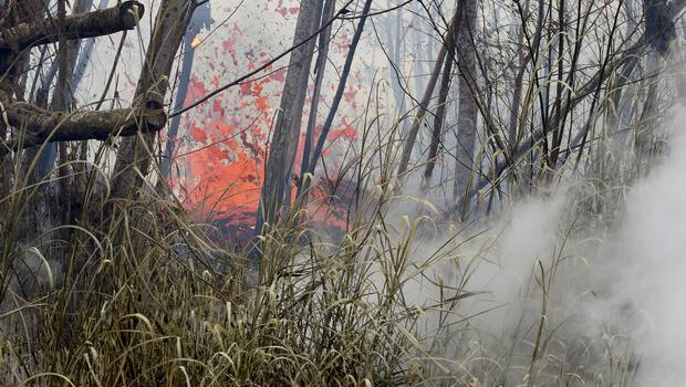 There are 14 lava-producing fissures in Leilani Estates, after two new ones formed on Tuesday (Hollyn Johnson/Hawaii Tribune-Herald via AP)