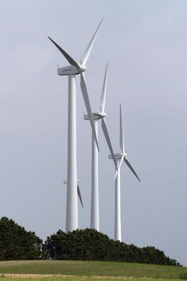 The wind industry is an economic success, a conference in Belfast will be told