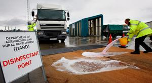 Officials pour disinfectant at the port of Larne during the foot-and-mouth emergency