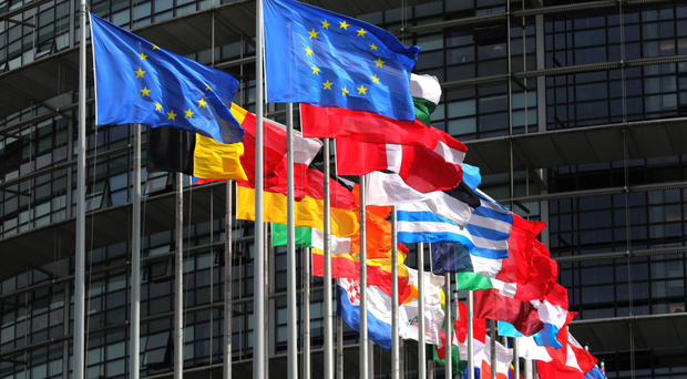 The public is set to go to the polls for the European elections