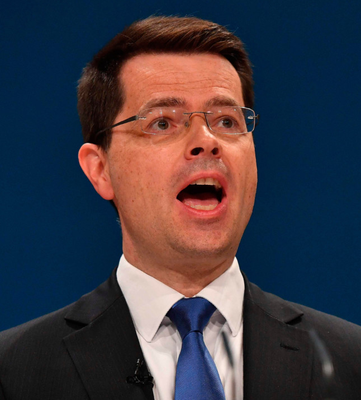 """James Brokenshire said he is """"entirely satisfied"""" with the arrangement that will see him invited to attend the European Exit and Trade Committee only when permanent members think his presence is required"""