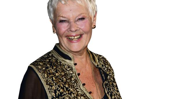 Big draw: Dame Judi Dench is much in demand