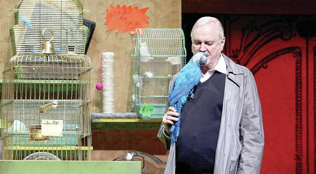 Unfunny: John Cleese and parrot