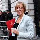 Andrea Leadsom arrives at Downing Street for a Cabinet meeting to discuss Brexit