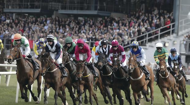 And they're off: Down Royal is a super day out