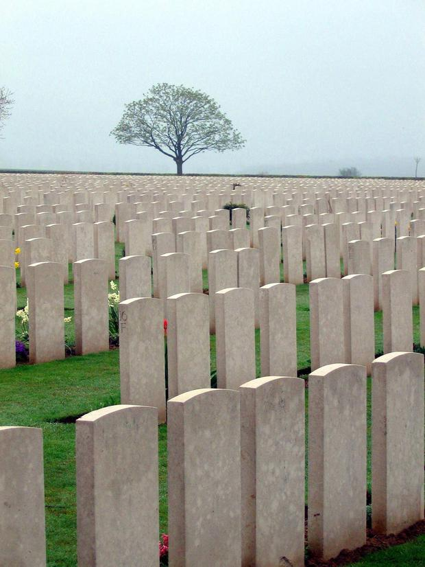 Preserved: War graves
