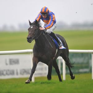 Magician winning at the Curragh