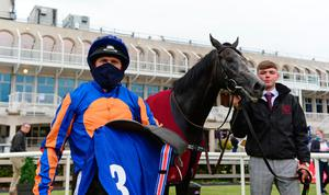 Derby delight: Padraig Beggy and Cormorant enjoy success at Leopardstown yesterday