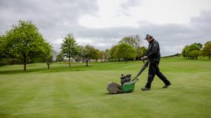 Coming back: the groundsmen at Banbridge Golf Club make their preparations for a return to golf tomorrow