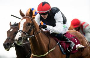 Big victory: Oisin Orr onboard Blue For You goes clear to win yesterday at Galway Festival