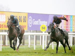 In front: Demophon (left) and Sarah Kavanagh ride to victory at Down Royal