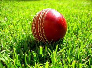 Cricket Ireland High Performance Manager Richard Holdsworth insisted it was imperative that the men returned to training as soon as possible if they were to travel to England in the middle of next month (stock photo)