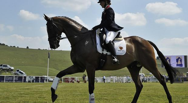 The Dublin International Horse Show reaches its climax on Sunday