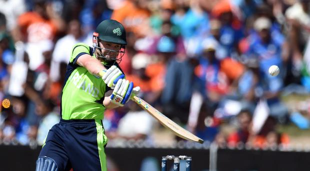 Date with destiny: William Porterfield believes Ireland can win their crucial game with Pakistan if they bring their A-game