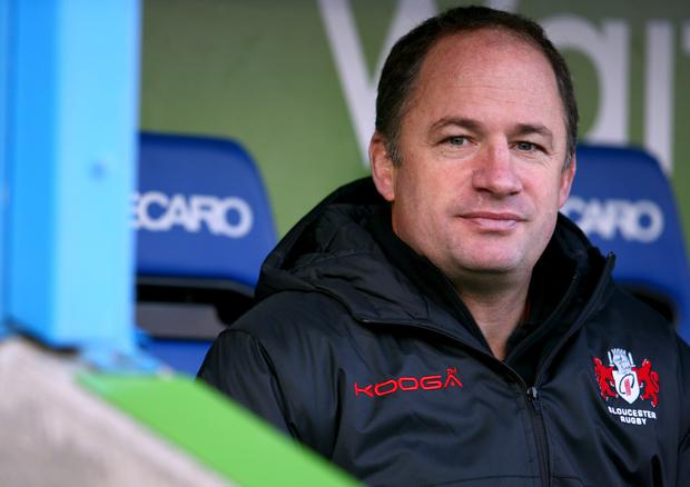 Looking up: David Humphreys is relishing the challenge of guiding Gloucester back to the top