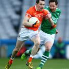 Mainstay: Andy Mallon has experience of playing Donegal