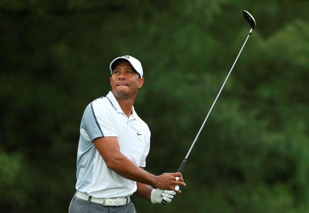 Hard work: Tiger Woods on his way to a first round 73
