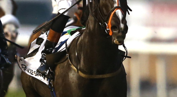 Reigning champion: Sole Power, with Richard Hughes, is going for a third King's Stand Stakes