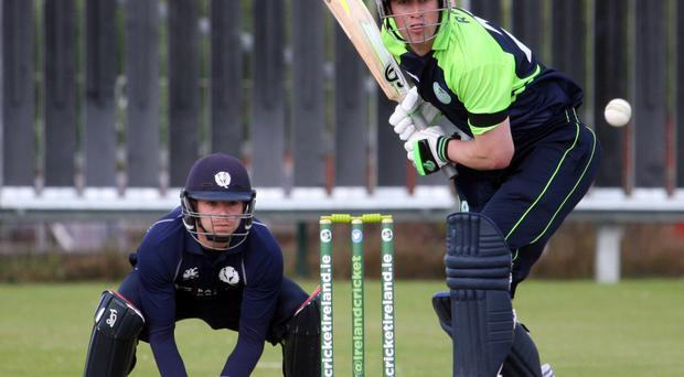 Aiming high: David Rankin top scored with 33 for Ireland yesterday