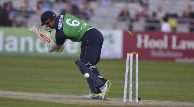 Wicket delivery: Ireland skipper William Porterfield is bowled by Mitchell Starc
