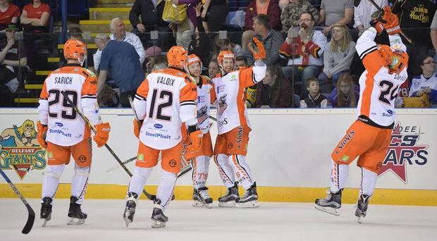 Sheffield Steelers forward Levi Nelson celebrates his goal against Belfast Giants (Dean Woolley)