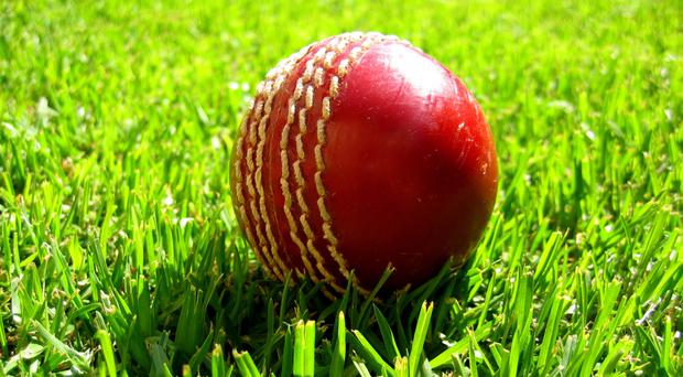 William Porterfield was top scorer with 25 as the holders were dismissed for a paltry 135, and No.11 David Scanlon showed up the other batsmen in the team by finishing third top scorer (stock photo)