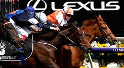 Edged out: Frankie Dettori and Master of Reality are beaten by Craig Williams on Vow and Declare