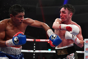 High drama: Jamie Conlan on the attack during his thriller with Yader Cardoza at the Waterfront Hall in March.