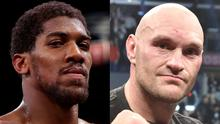 Anthony Joshua and Tyson Fury are the heavyweight champions of the world (Nick Potts/Lionel Hahn/PA)