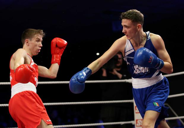 Just champion: Brendan Irvine (right) on way to victory over TJ Waite in last night's flyweight final