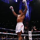 Anthony Joshua defended his world heavyweight titles with victory over Alexander Povetkin at Wembley (Nick Potts/PA)