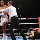Anthony Joshua knocked out Alexander Povetkin (Nick Potts/PA)